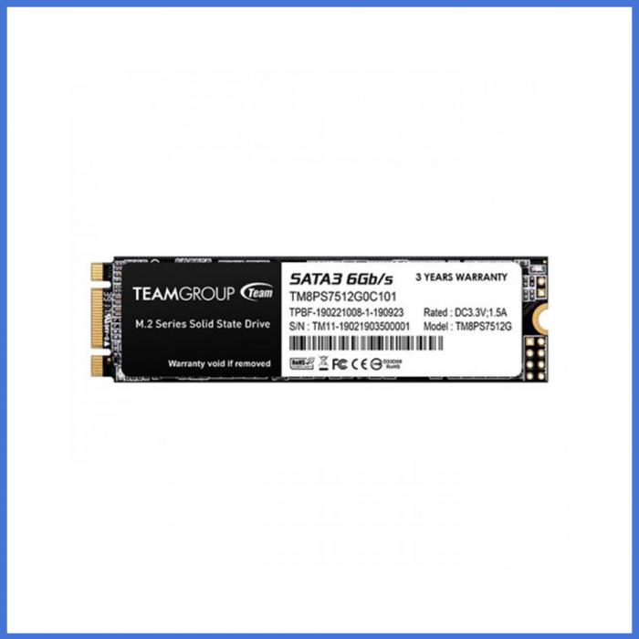 Team MS30 256GB M.2 2280 SSD